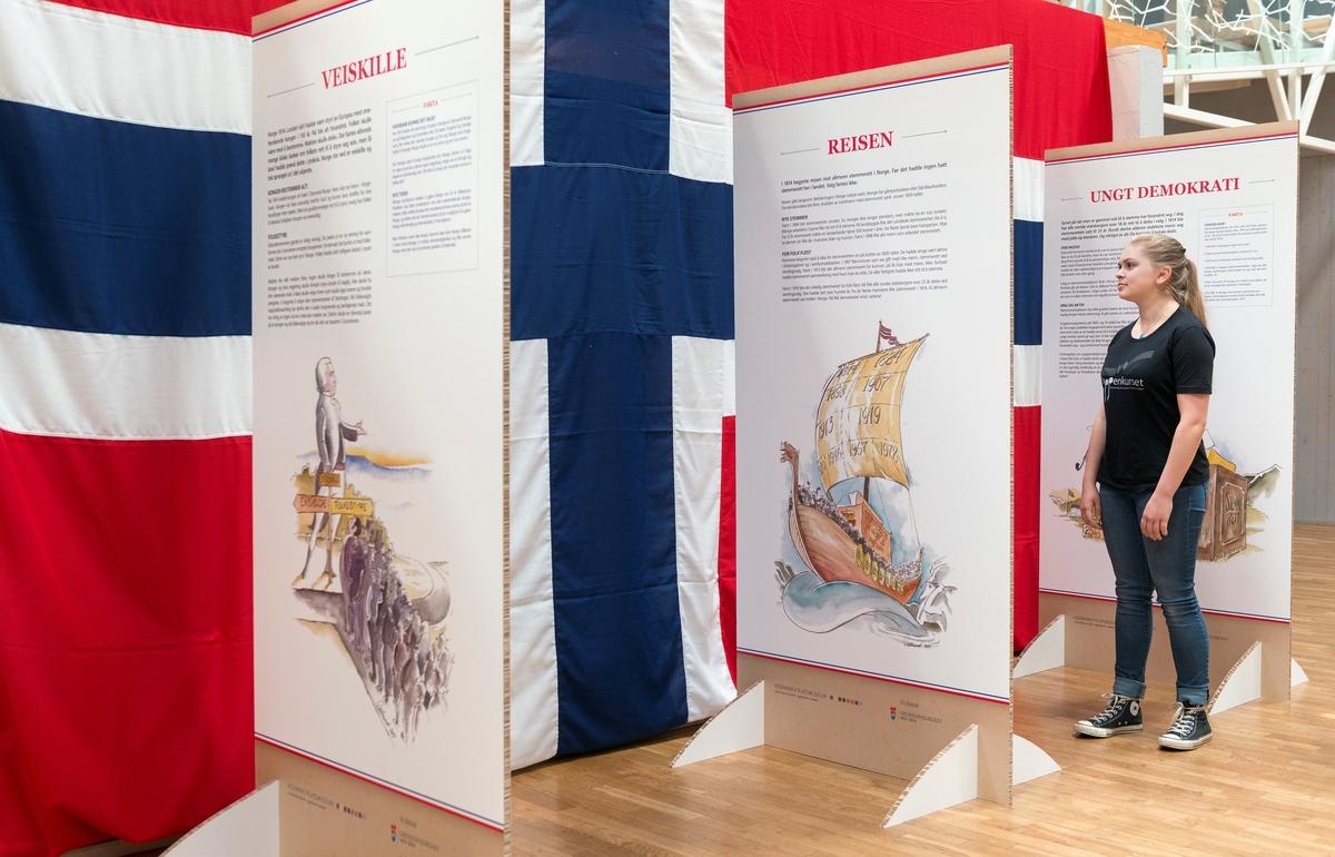 Skjermutstilling som forum for formidling i Hedmark fylkesmuseum (fra våren 2014 Anno museum AS) har produsert i forbindelse med at Norge fikk sin egen grunnlov.  Utstillingen har hovedtittelen «Framtidas stemmer».  Den besto av tre skjermer som er to meter høye, en meter brede og er lagd av halvannen centimeter tjukk bølgepapp.  Skjermene hadde tekst og tegninger på begge sider, slik at det til sammen ble seks visningsflater.  Tekstene hadde titlene «Veiskille», «Framtidas stemmer», «Reisen», «Politisk tyngde», «Ungt demokrati» og «Folkets røst».  De forklarte i korte ordelag overgangen fra et kongestyrt enevelde til et folkestyre der en voksende del av befolkningen får delta i valg av representanter til nasjonalforsamlinga, som vedtar landets lover og gjennom bevilgninger styrer mye av samfunnsutviklinga.  Utstillingen poengterte at hedmarksamtmannen Claus Bendeke (1763-1828) var en sentral premissleverandør i eidsvollmennenes diskusjoner om nettopp stemmeretten, og at embetsmennene var dominerende da konstitusjonen ble utformet på Eidsvoll i 1814.  Samtidig presiserte man at stemmeretten fra først av bare gjaldt menn som hadde eiendommer, og at denne borgerretten stadig ble utvidet til å gjelde flere: Først menn som ikke nødvendigvis hadde eiendom, men en viss inntekt (1884), dertter alle menn uansett inntektsforhold (1898), kvinner som var gift med formuende menn (1907) og endelig alle kvinner (1913).  Utstillingen minnte også om at stemmerettsalderen er senket, fra 25 år i 1814 til 18 år i vår samtid.  Avslutningsvis appellerte utstillingsprodusentene publikum til å bruke stemmeretten.  De korte tekstene, som Espen Olavsson Hårseth har vært hovedansvarlig for, var illustrert av humoristiske, kolorerte tegninger, som Hamar-tegneren Oddmund Mikkelsen hadde utført for dette prosjektet.  Utstillingsskjermene var montert foran et digert flagg, som hang mot en av murveggene i Norsk Skogmuseums sentralhall, der det fungerte som blikkfang.  Da dette fotografiet ble tat