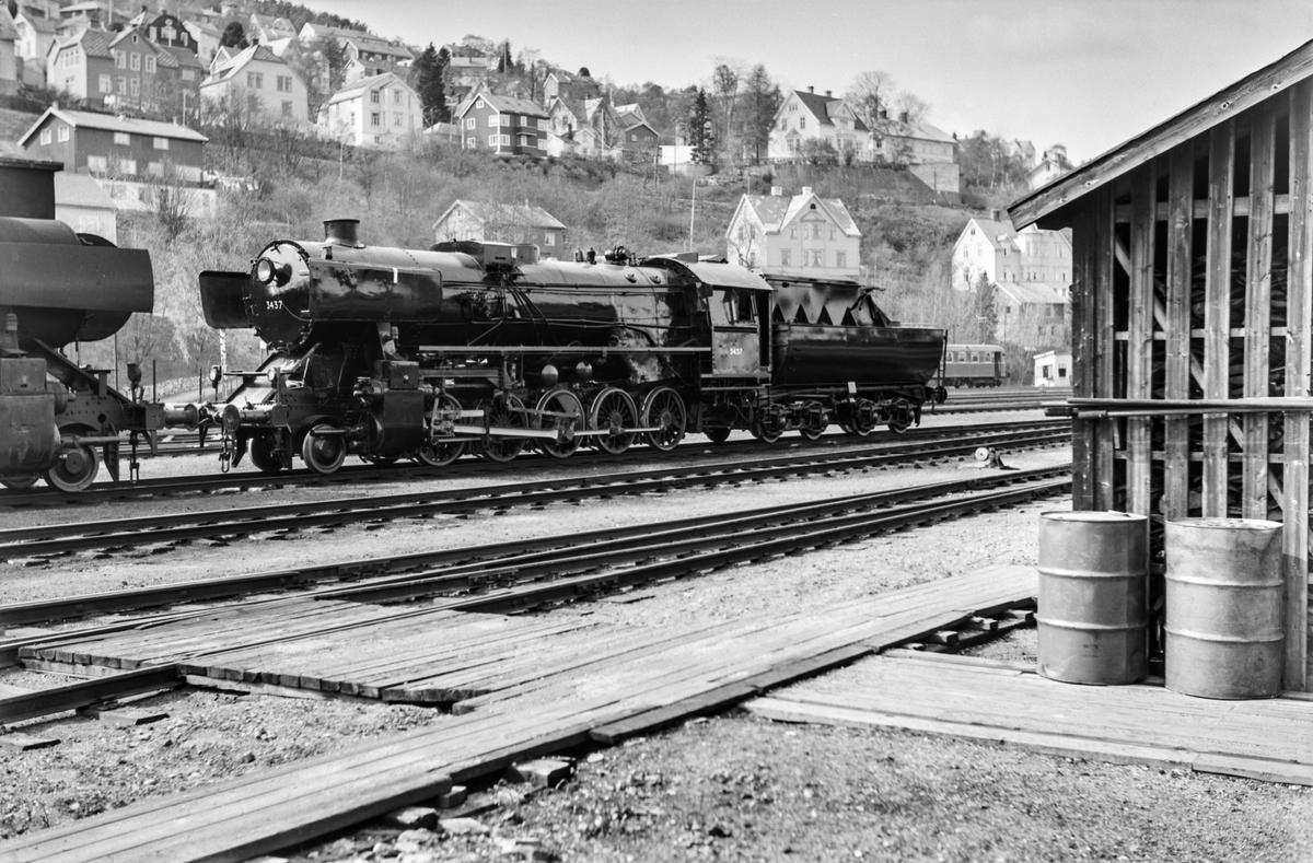 Nymalt og nyrevidert damplokomotiv type 63a nr. 3437 på Marienborg.