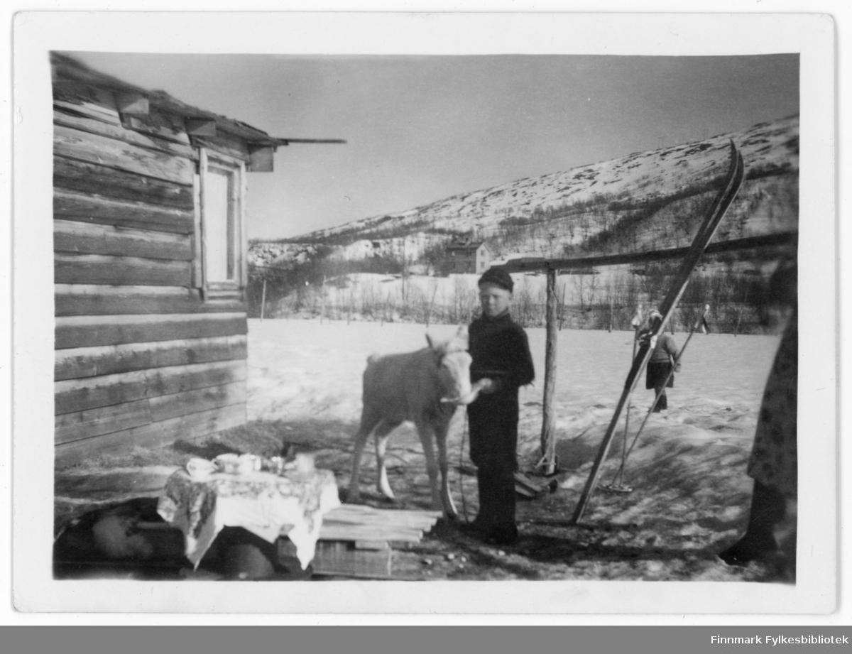 Ca. 8-10 år gammel Are Ingvald Hallonen med reinsdyr utenfor et hus. Noen har vært på ski, noen har drukket kaffe utendørs. Ei lite jente står i bakgrunnen.