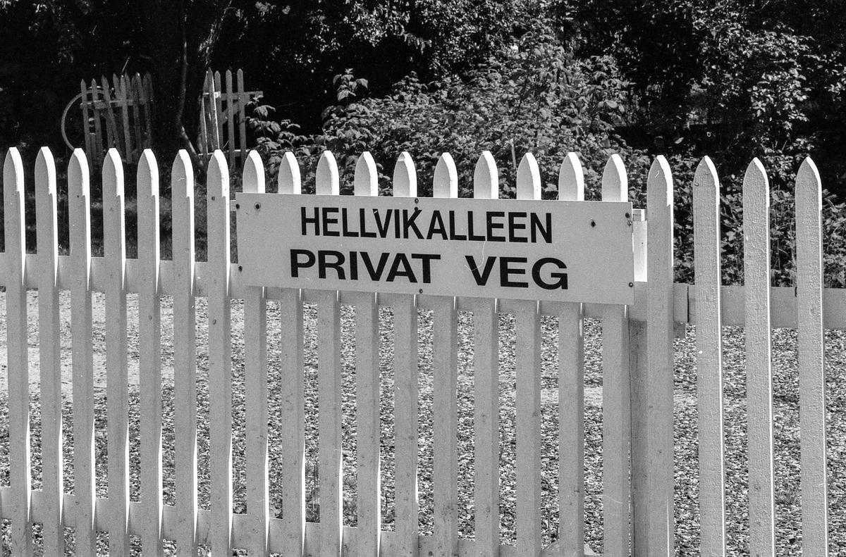 Bevaringsverdige bygninger på Hellviktangen, Nesodden. Kulturperle som skulle brennes. Mary Anne Zagler, bestyrer for bygningene og driften.