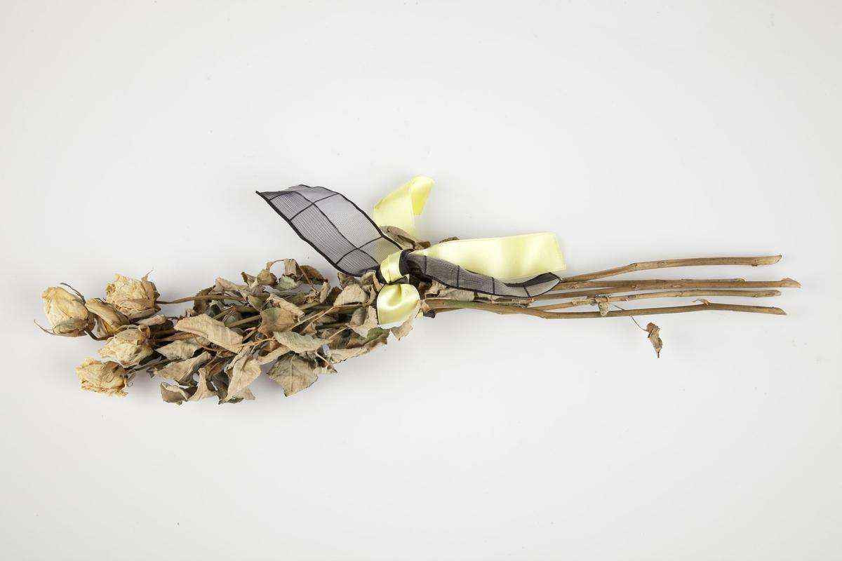 Rose innsamlet etter terrorhandlingen 22. juli 2011 fra minnesmarkeringene i Lillestrøm.   Gulnede hvite roser som har tørket i den fasongen rosen har rett før den åpner seg - store knopper. Bladene, som har blitt lysebrune, dog med noe grønt og grått, sitter på øvre halvdel av stilkene. Nokså mye av bladene er bevart. Stilkene er for det meste brune men med noen innslag av lilla og grønt. Tornene er fjernet. Båndene, ett sort og ett gult, er knyttet forholdsvis løst rundt stilkene midt på buketten. Båndene danner et dekorativt element. Det ene båndet er lysegult og silkeaktig. Det andre båndet er sort og løst vevet slik at det blir gjennomskinnelig. Mønsteret på den sorte sløyfen er firkantede felter. Tettere vevet sort tråd lager avgrensningene. Båndet er delt på langs med en strek. Videre er det streker på tvers med jevne mellomrom.