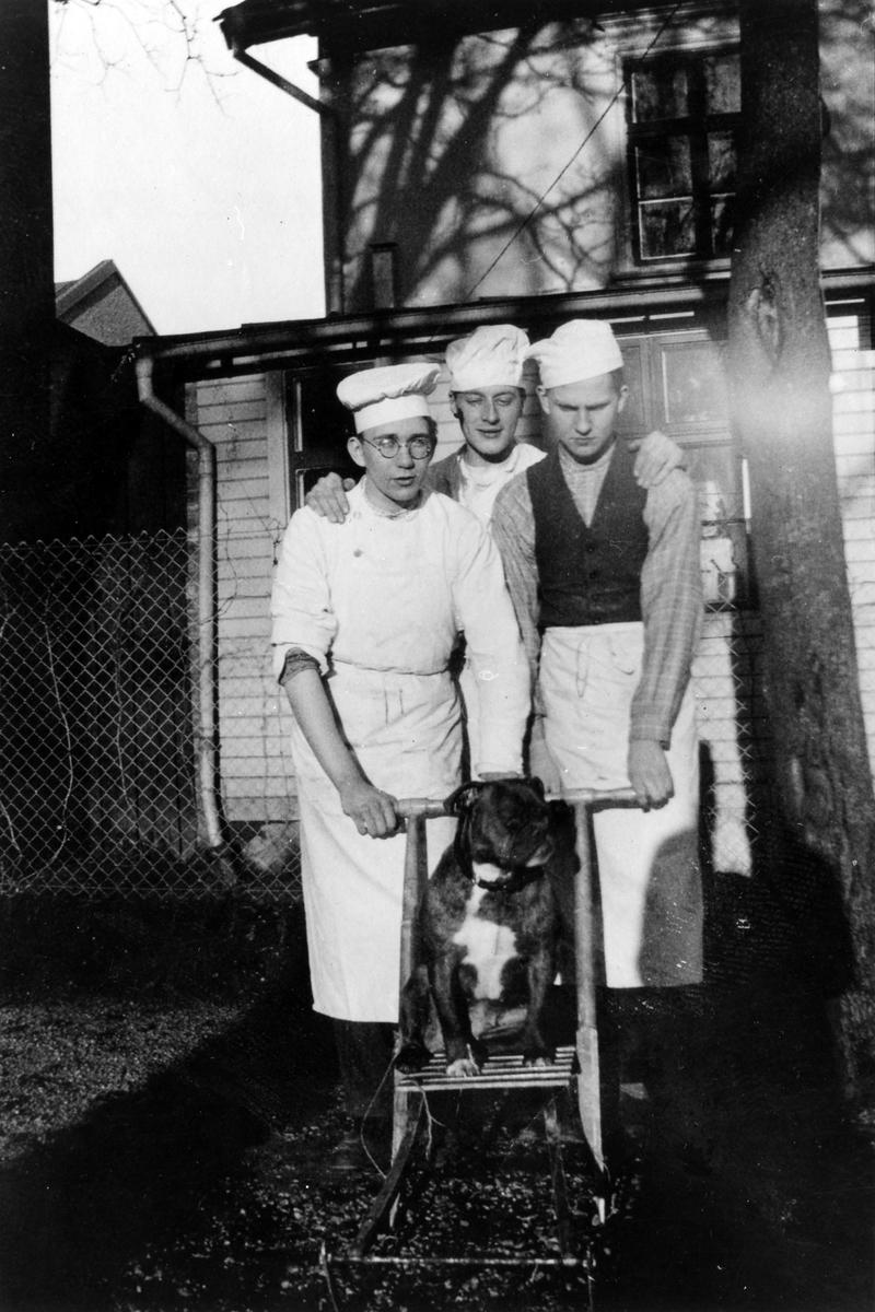 Tre manliga bagare på Ljungblads konditori står ute på gårdserveringen framför en spark med en hund som sitter ovanpå.