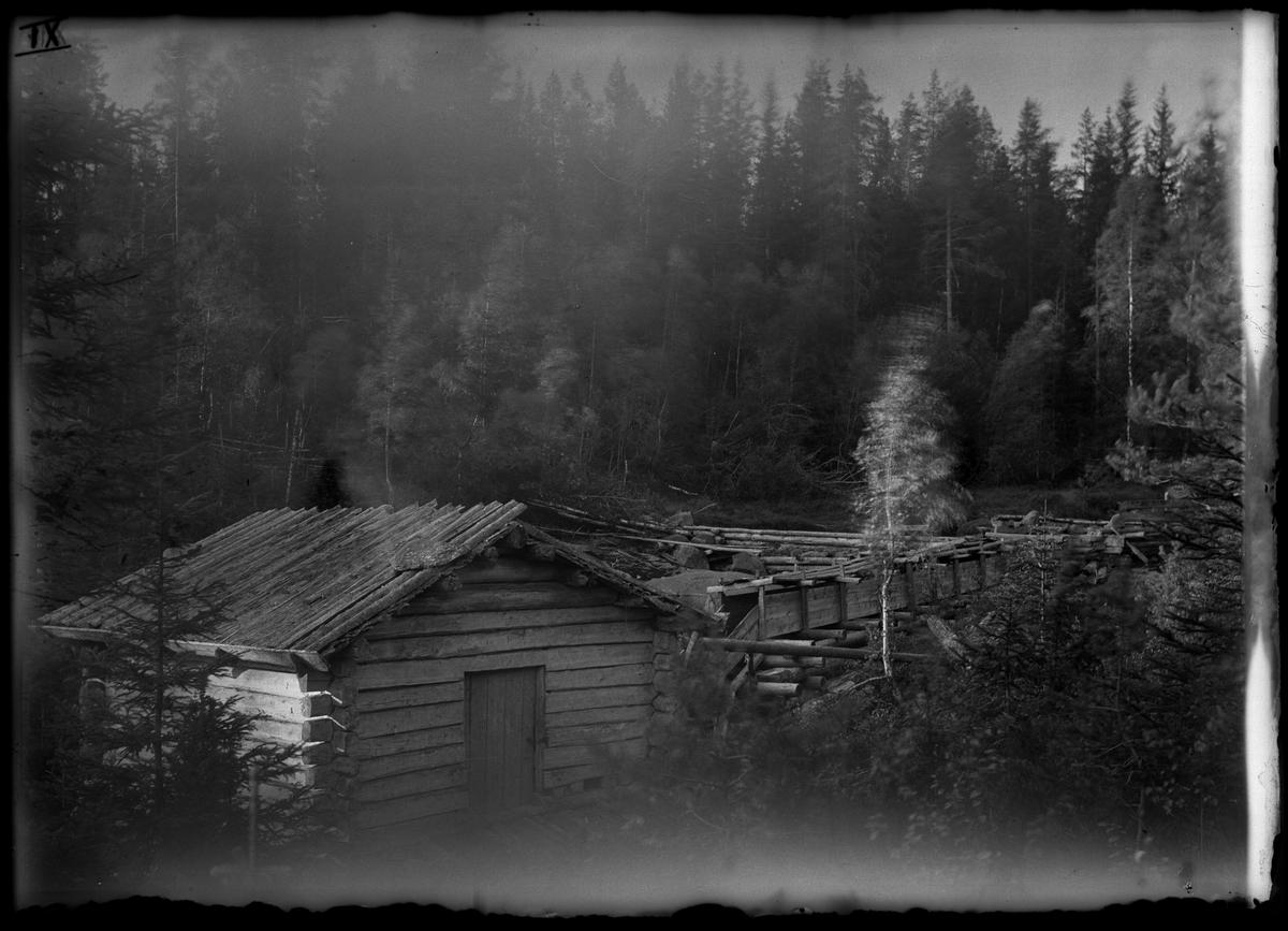 Finnskogen.
