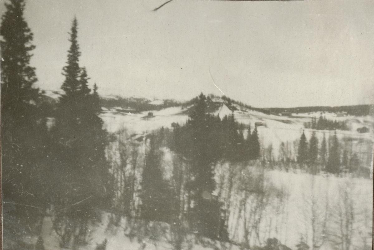 Vinterlandskap vid Duvedsmonumentet.