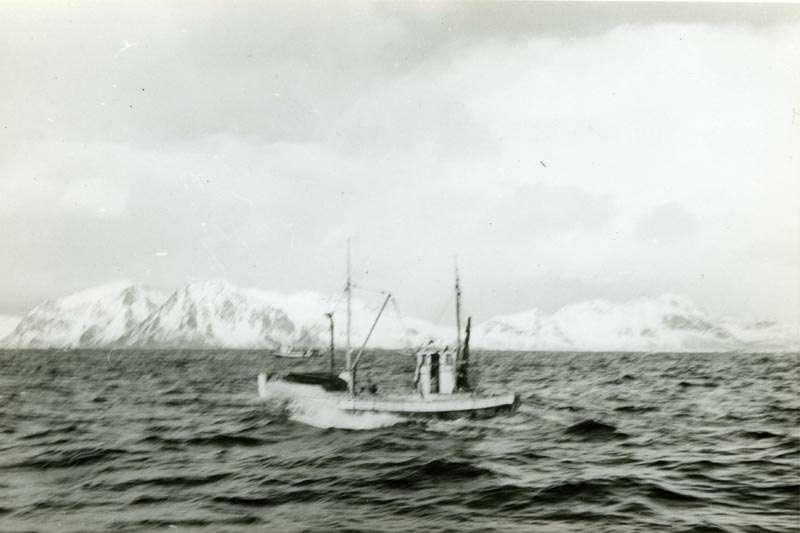 Fiskebåt på vei inn fra feltet med fangst