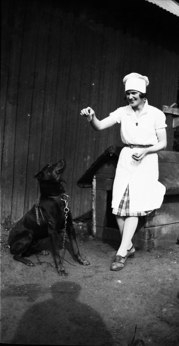 """En kock har tagit paus ute på gården och lutad mot hundkojan matar hon en stor hund som """"sitter vackert""""."""