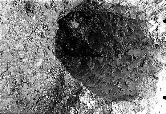 Altuna socken Fröslunda RAÄ fornlämning 30. Del av stolpe i graven.