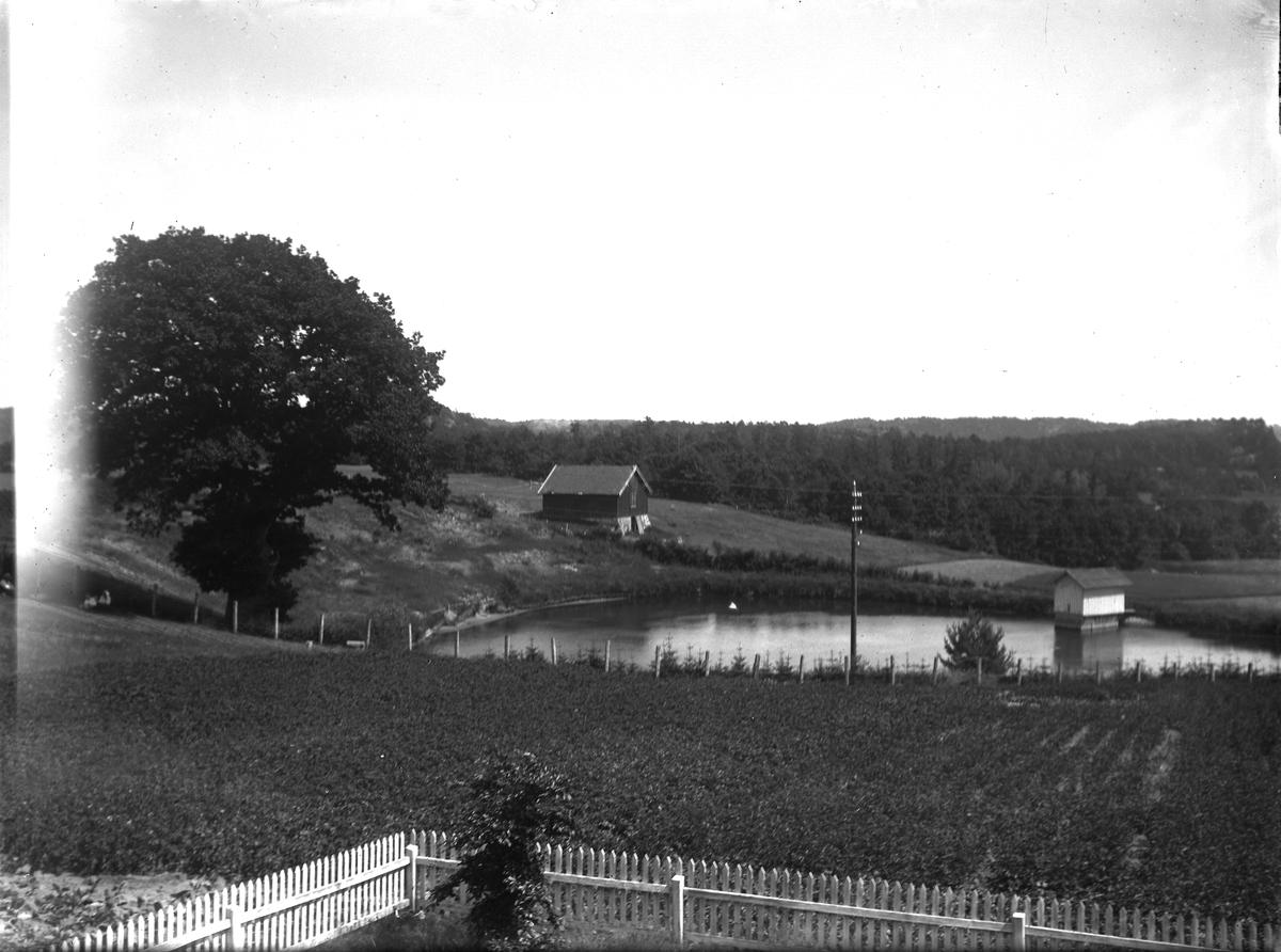 Dømmesmoen Oversikt sydover mot dammen ved den store Eika. (Fra ca. år 1100)