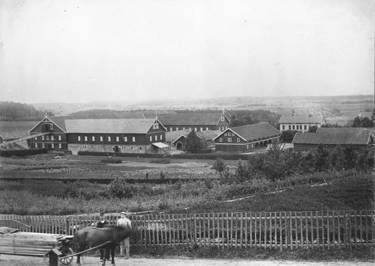 Utsyn fra Kirkeveien mot driftsbygningene på Norges Landbrukshøgskole