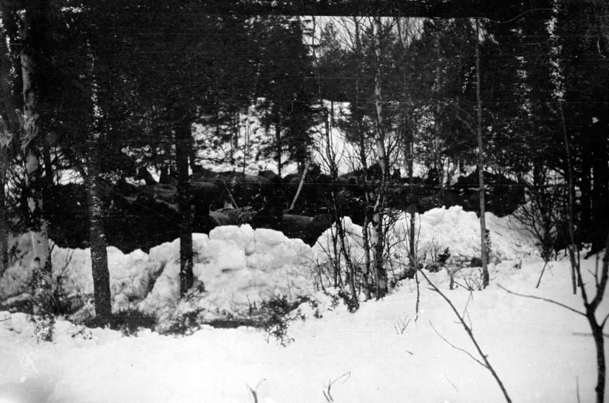 Militær vinterøvelse, Leir