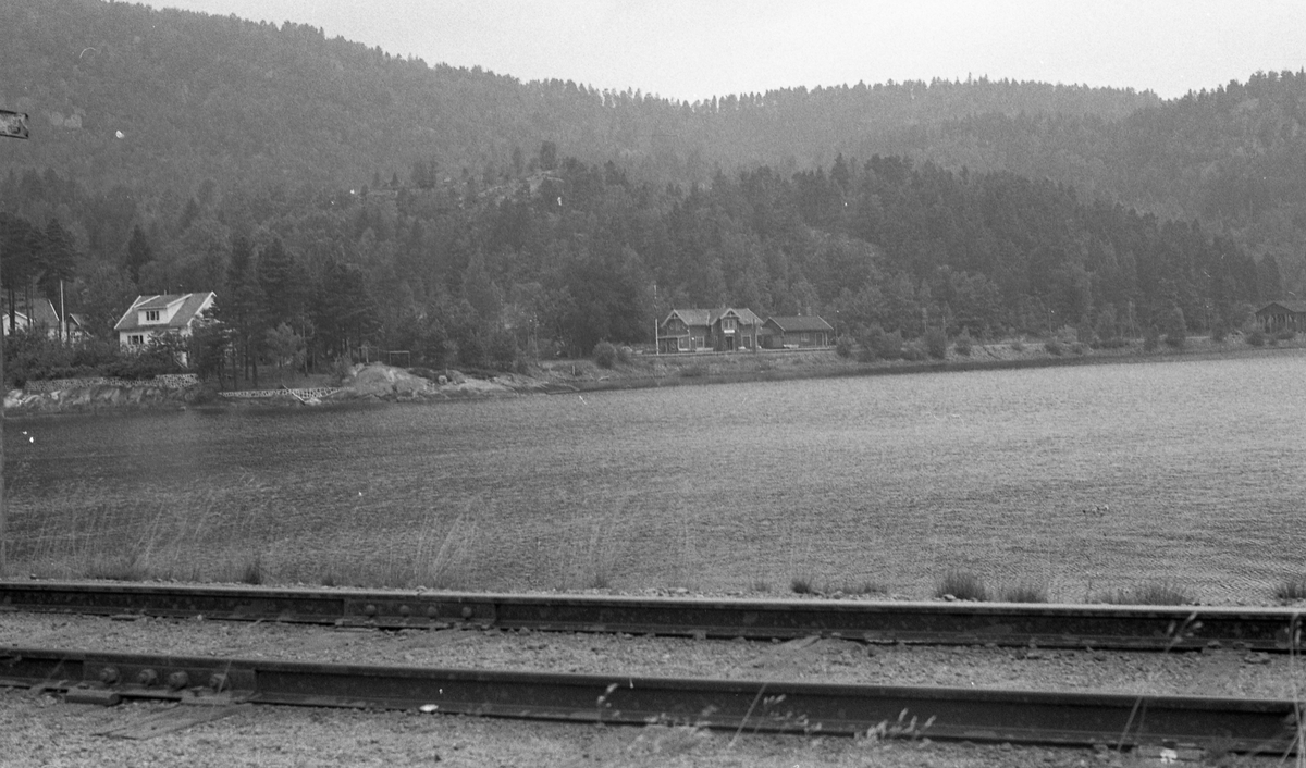 """Setesdalsbanen syd for Hægeland stasjon. """"Mandalsporet"""", et sidespor fra Hægeland, sees i forgrunnen."""