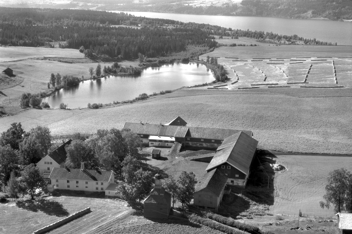 Flyfoto av Tjerne gard, Gaupen, Ringsaker.