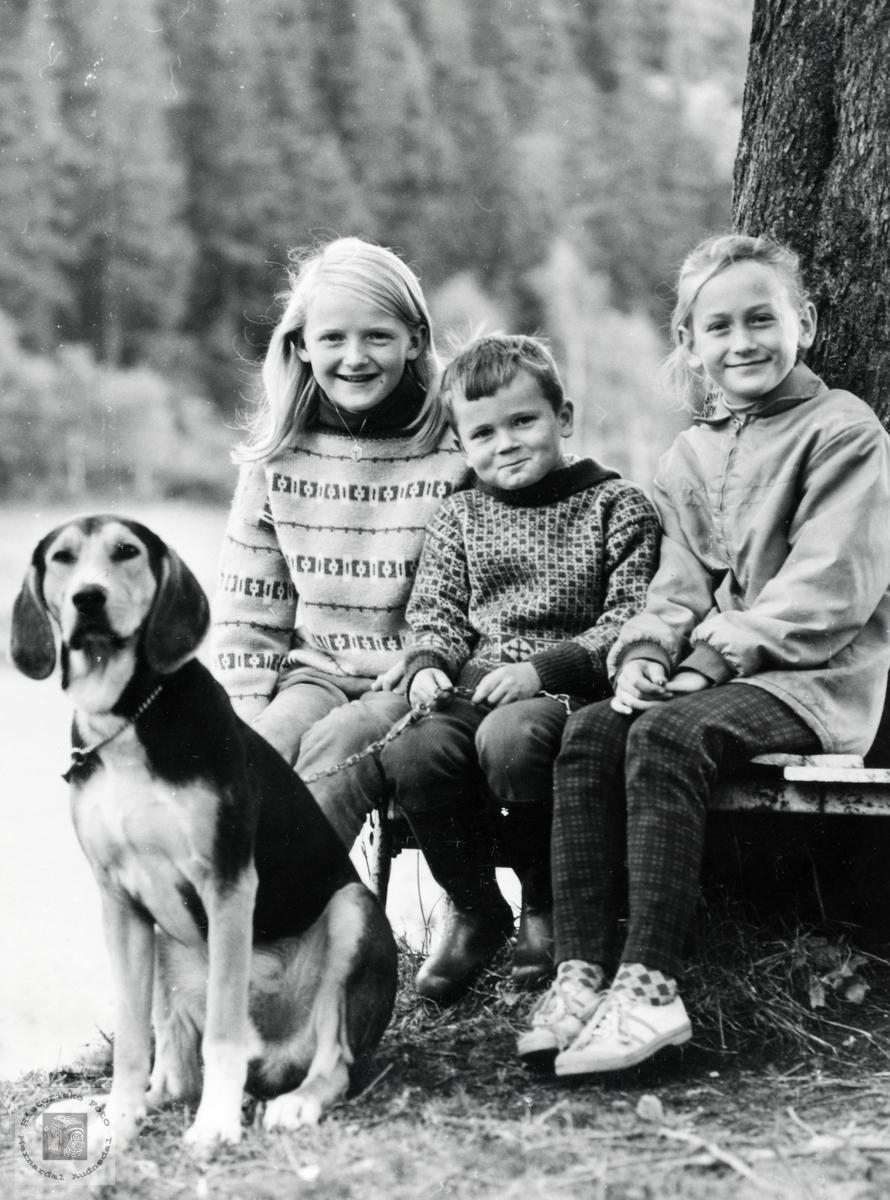 Portrett av søsknene Seland med hunden King. Audnedal.