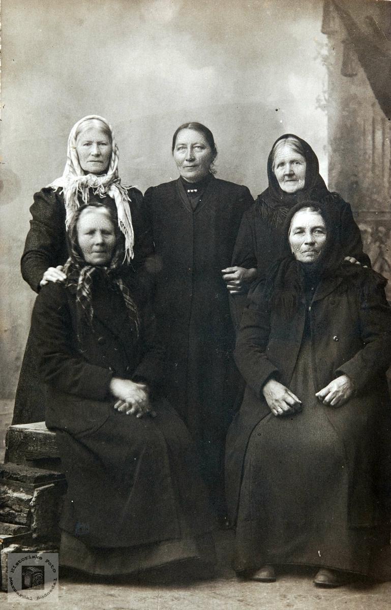 Damer fra Konsmo hos fotografen. Audnedal.