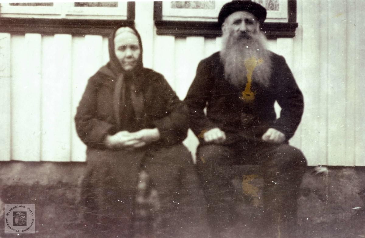 Portrett av ekteparet Tomine og Ole Viblemo. Konsmo Audnedal.
