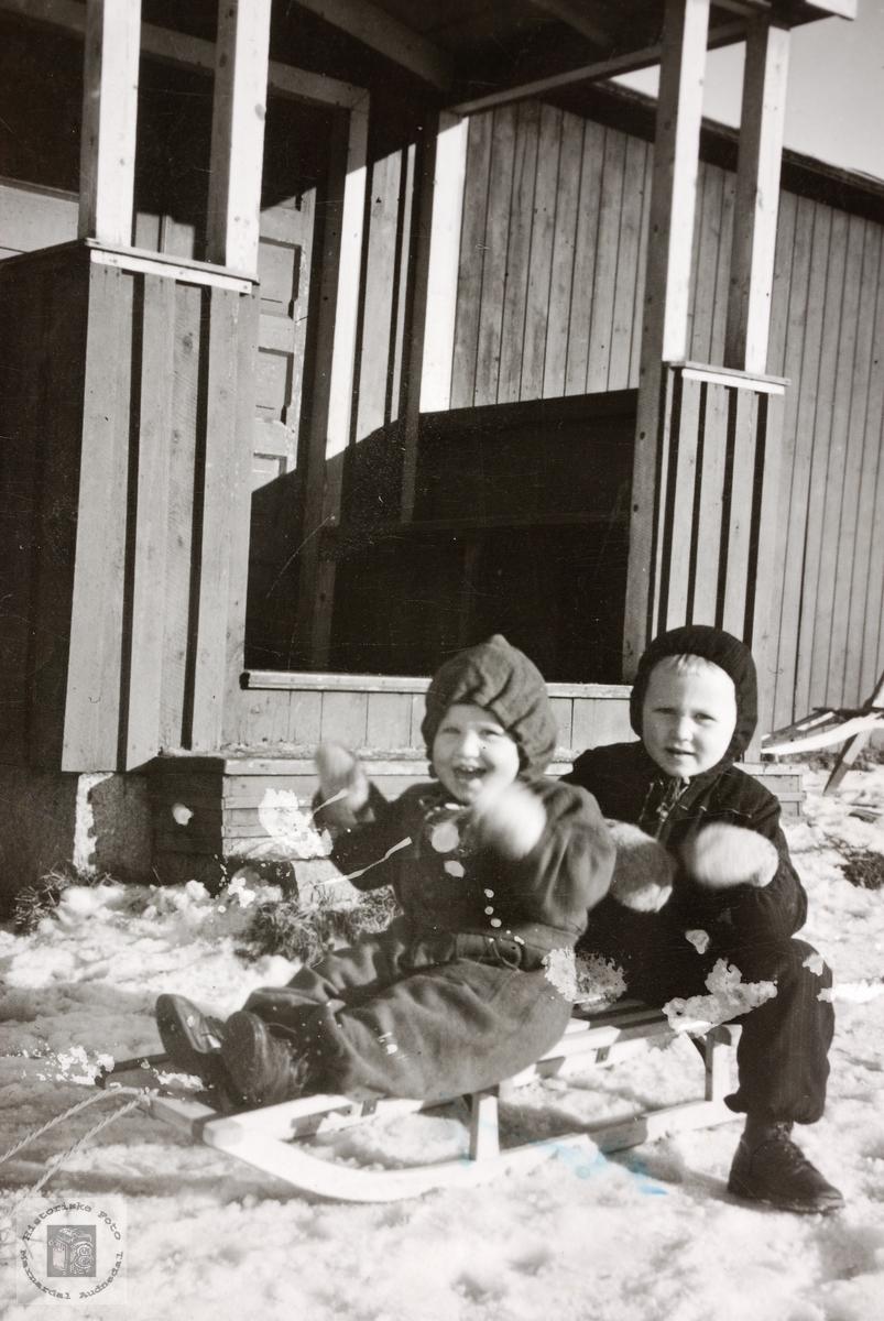 Brødrene Røynesdal klar for aketur. Jelsnes.