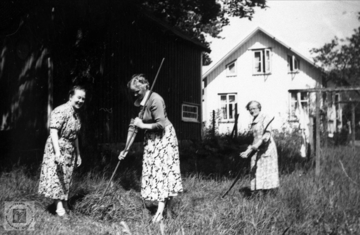 Slåttehjelp hos Targjerd Trygsland på Øyslebø..