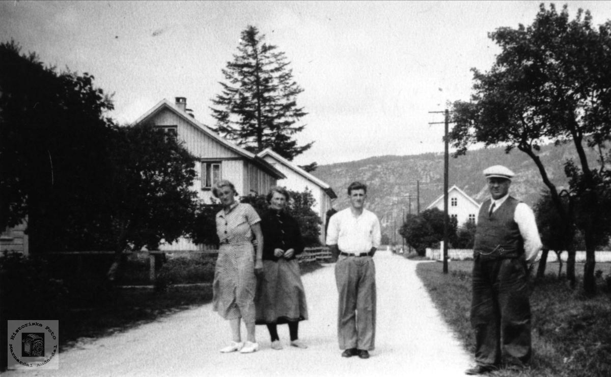 Folk og hus i Øyslebø sentrum.