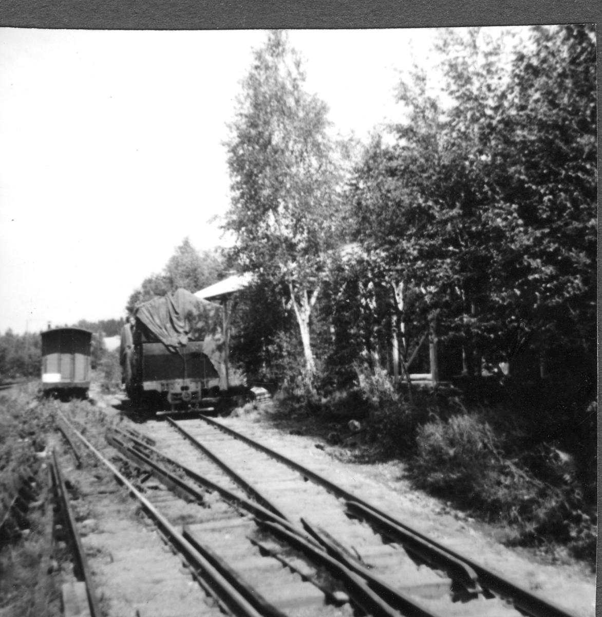 Fra museumsbanens stasjon på Bingsfoss.