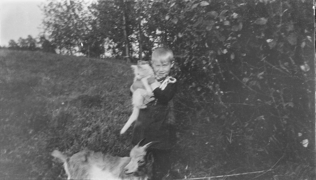 Iacob Ihlen Mathiesen, holder en katt i et godt favntak. Rett foran gutten står en geitekilling.
