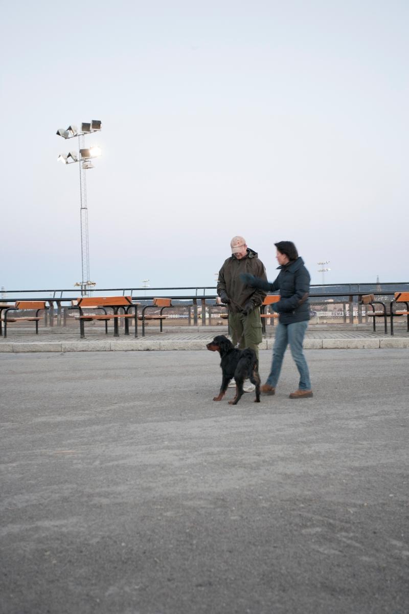 Dressurkurs for hund. Hundeeier og hund på kurs.