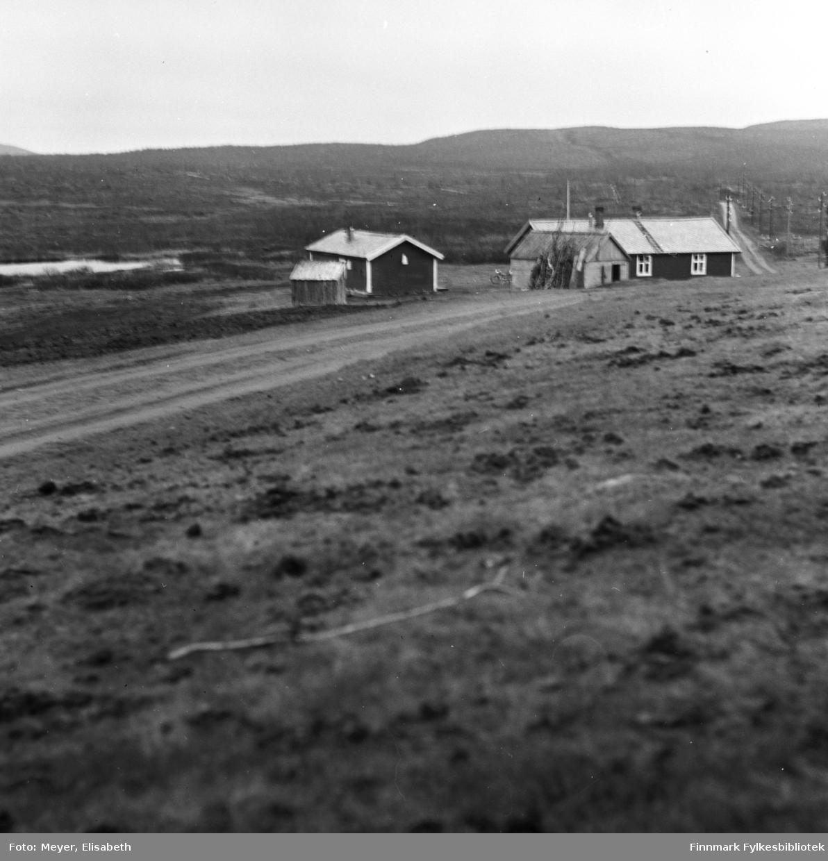 Statens Fjellstue. Biggeluoppal,eller Bingis som de fleste i Finnmark kjenner den tidligere fjellstue sørvest for Máze som. Bingis ligger sørvest for Masi ved den gamle veien mellom Alta og Mieron, 383 meter over havet.