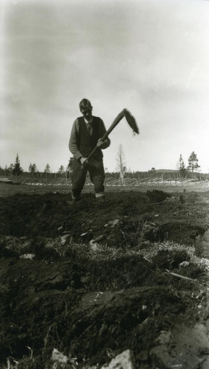 Otto Granli (1896 - 1930) hakker i jorda i Kallberg, Grønberget