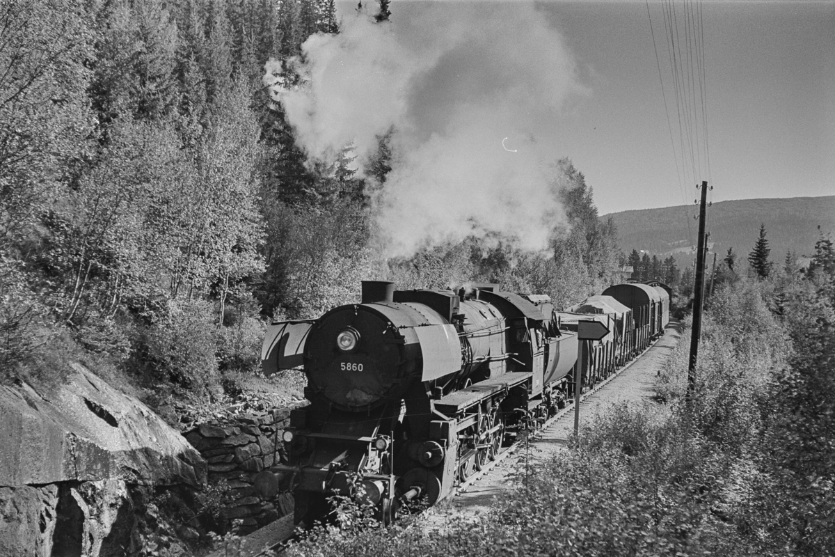 Nordgående godstog på Rørosbanen nord for Rugldalen stasjon. Toget trekkes av damplokomotiv type 63a nr. 5860.