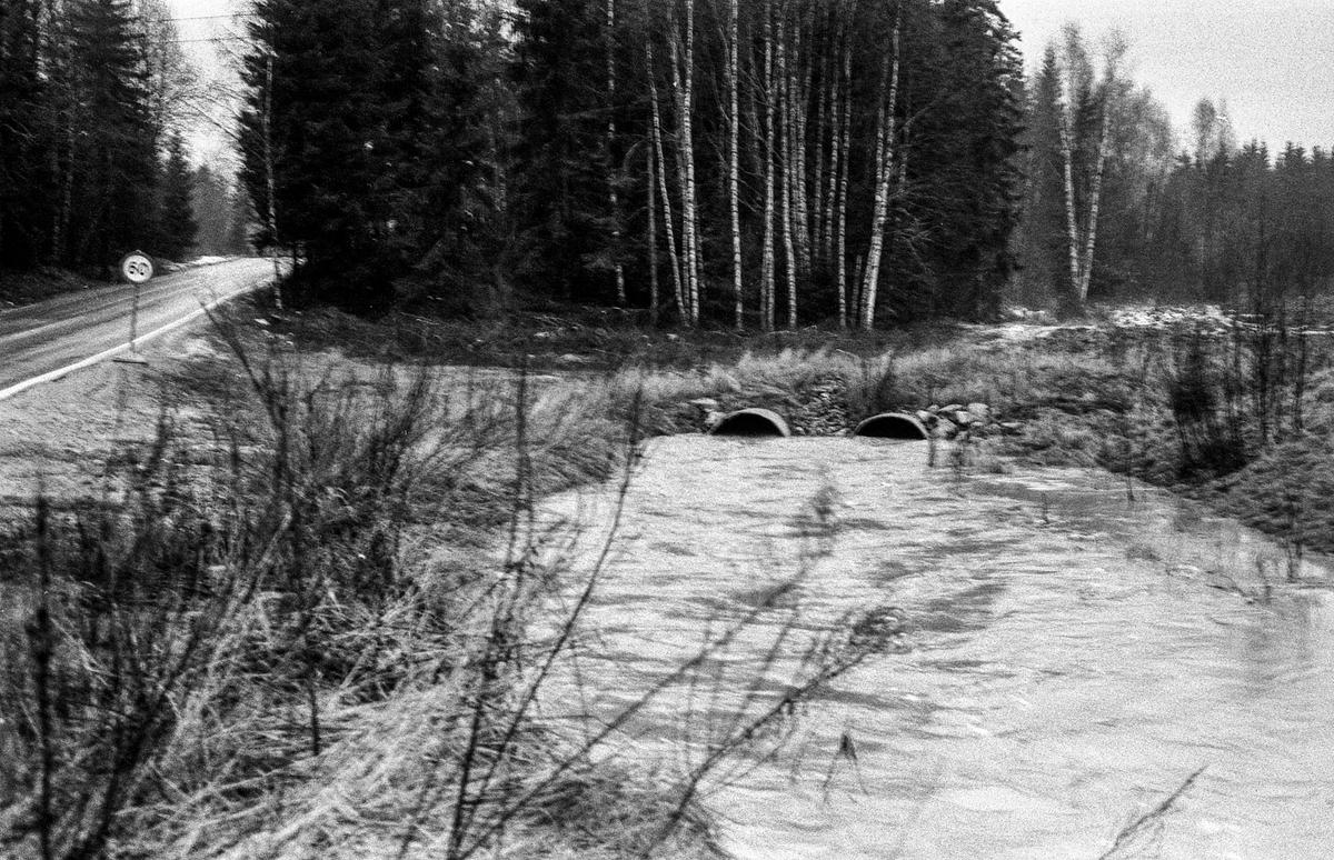 Flom i Follo. Dame øser vann i kjelleren med plastbøtte. Flom over veier og jorder mellom Horgenkrysset i Ås og Frogn. Biler kjører i flomvannet.