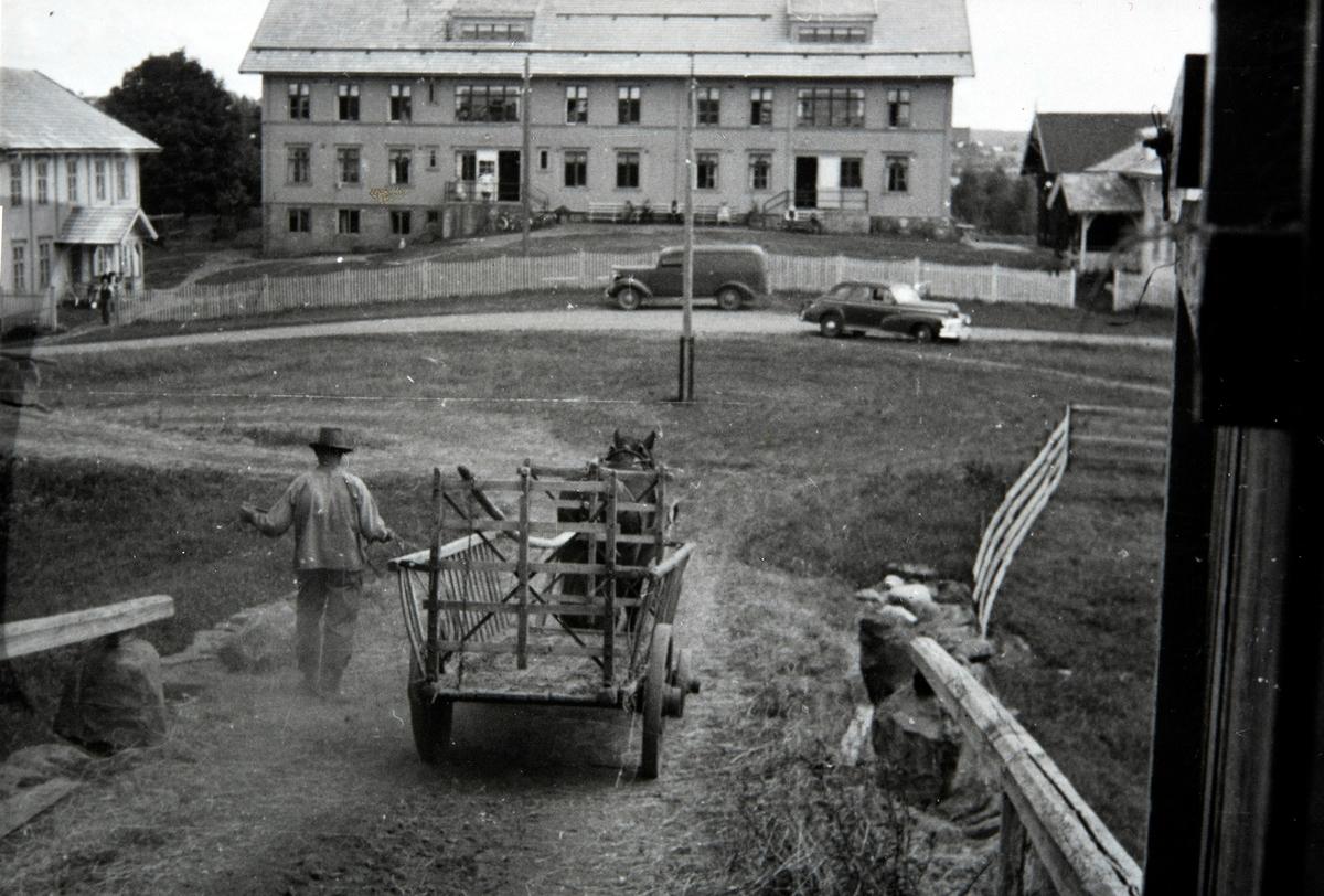 Fokhol gård, Stange, slåttonn, høyonn, hest, høyvogn, hestekjøretøy, Pål Kristiansen ved tømmene.