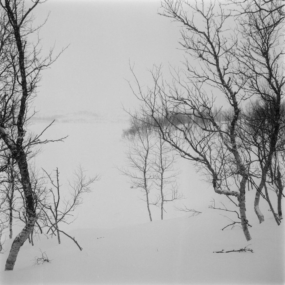 Gluggvatnet oversikt, vinter.
