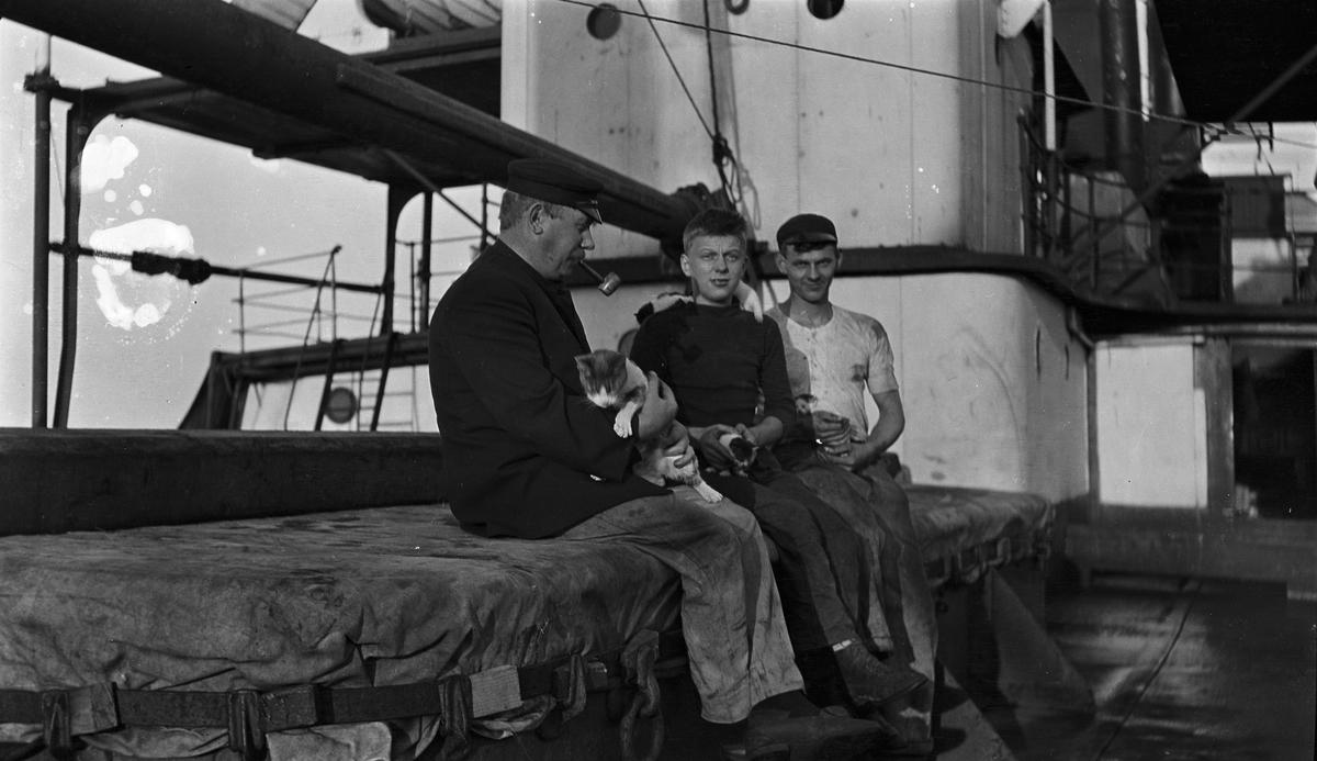 Midskipet på D/S STORFOND, en mann og to unge gutter holder hver sin katt.