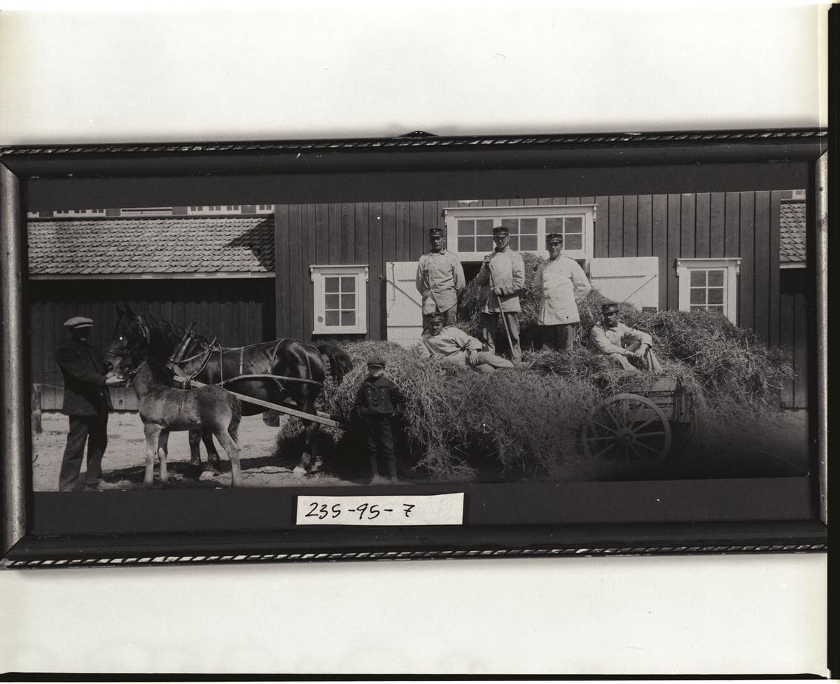 Høylevering på Gardermoen.  Lars Asper og nevøen Hans Habberstad leverer høy fra Asper gård til Gardermoen.