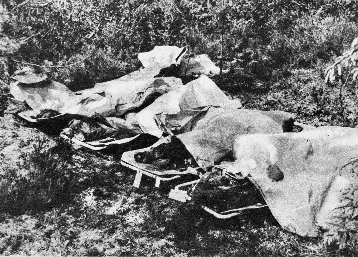Det ble funnet 20 døde i en grav på Trandum.