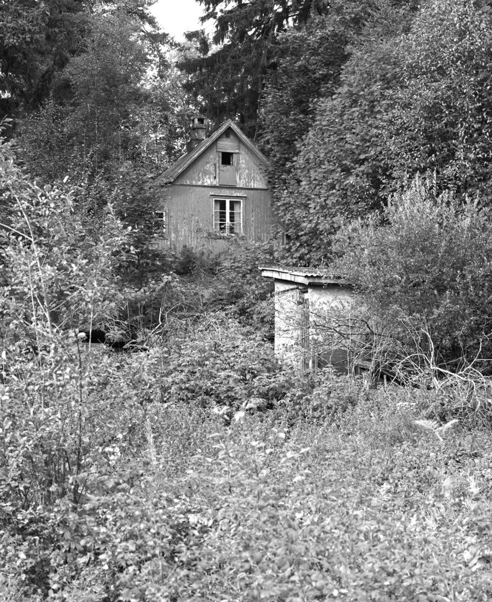Hytte i skog, utedo