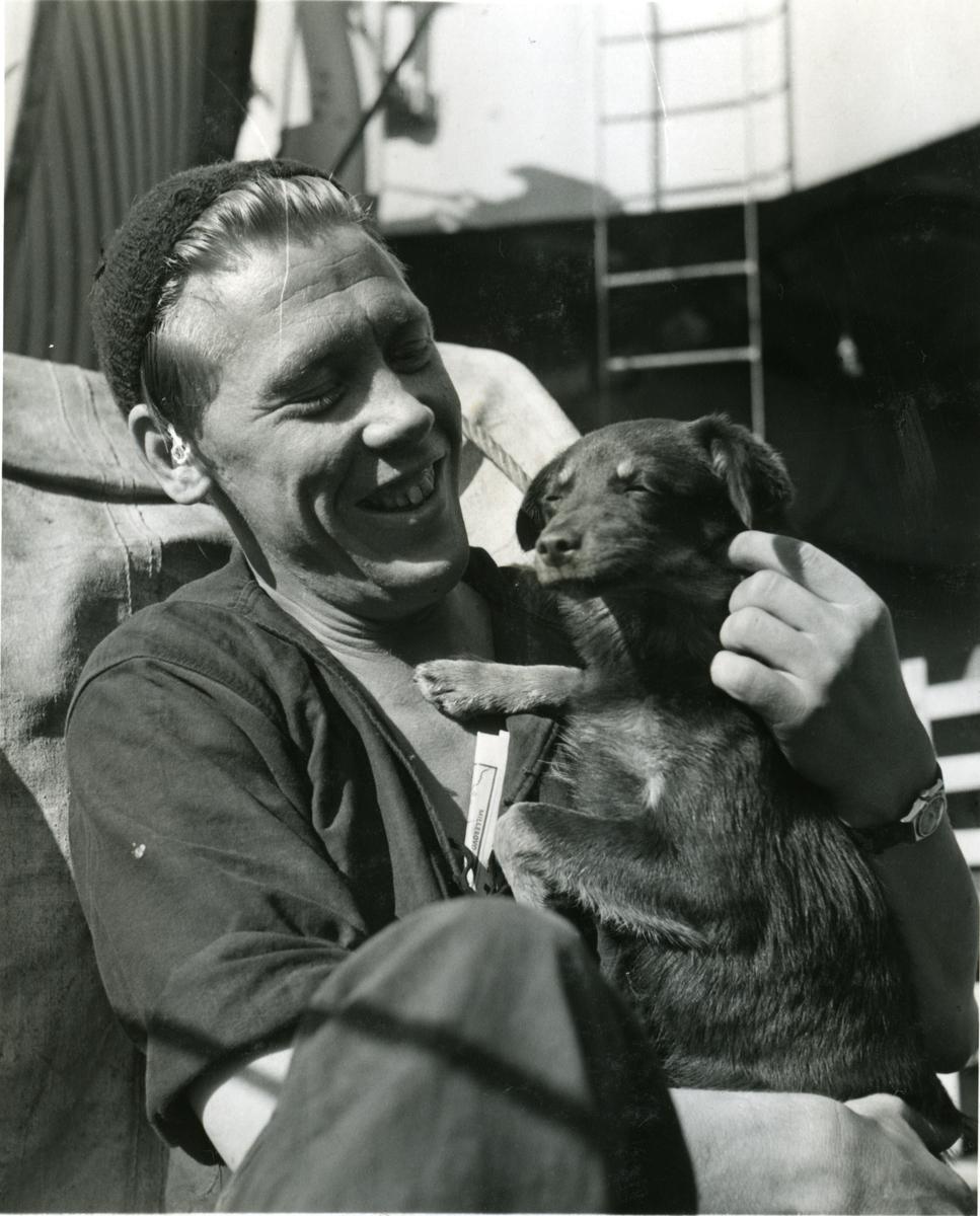 """Album Glaisdale H.Nor.M.S. """"Glaisdale"""". Fotograf: Keystone press. En av mannskapet og hunden hans."""