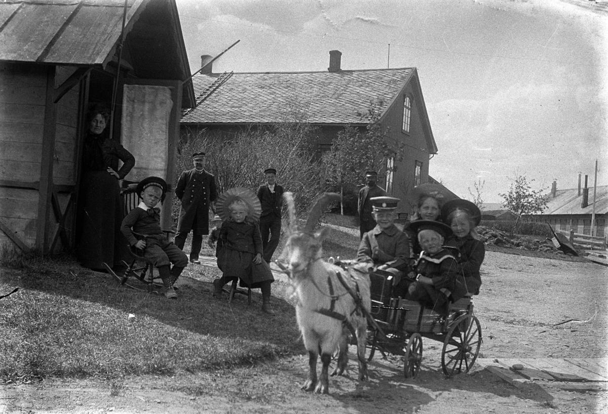 Fire barn i ei kjerre trukket av ei geit. Dette er fra Neby gård i Tynset. Her er det barna som leker seg med Geita på gården. Trolig er bildet fra helt i starten på 1900 tallet.. Andre personer i bakgrunnen. Tynset. Mellom sorenskrivergården til venstre og Tynset stasjon, lokomotivstallen til høyre.