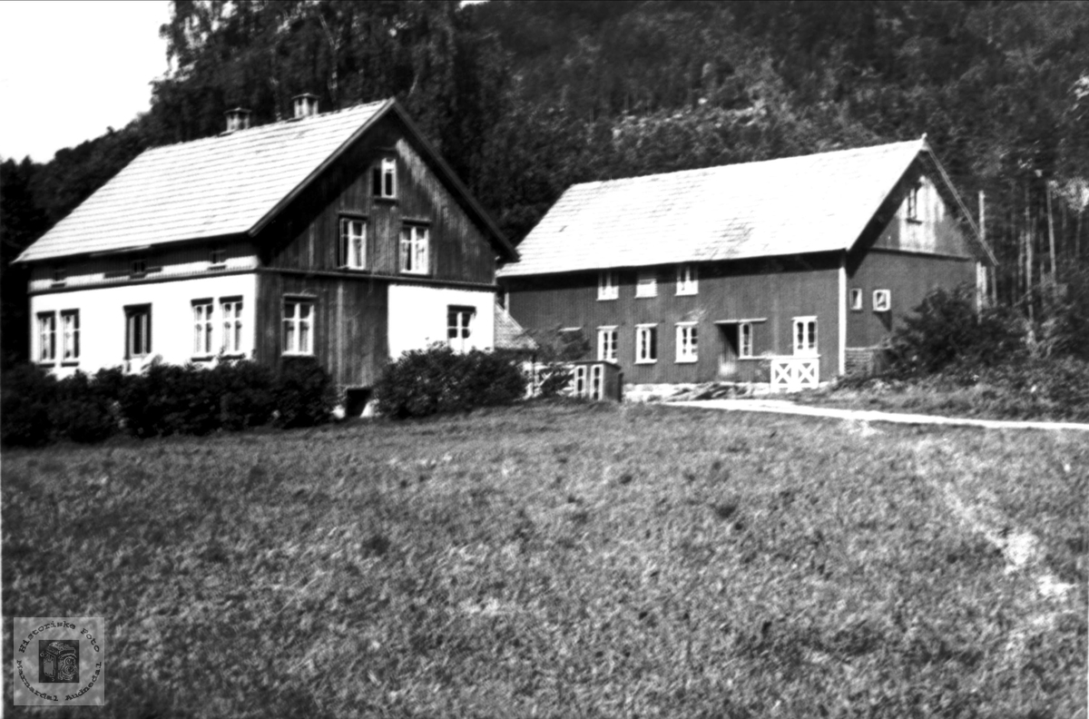 Hus til Elling Stedjan på Gnr. 117 Bnr. 6 Eigan i Bjelland.