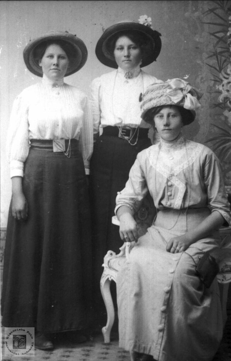 Portrett av tre fint pynta ukjente damer. Trolig med tilknytning til Abelset i Bjelland.
