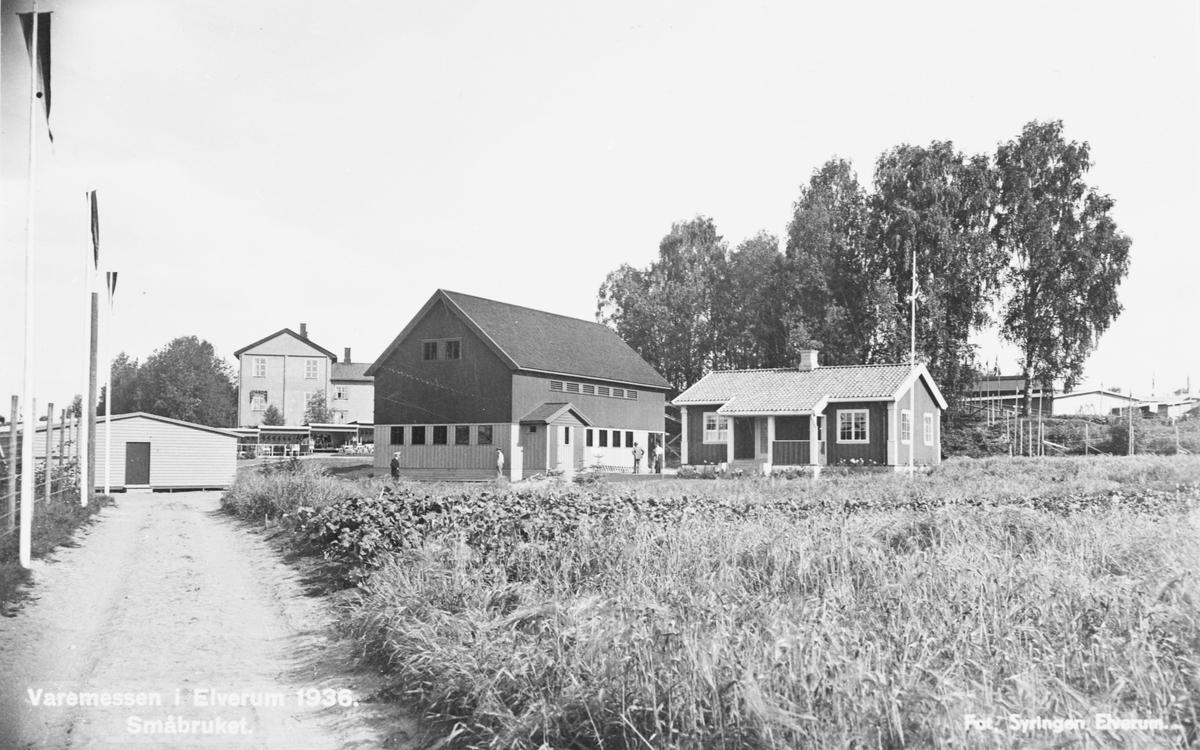 Fra varemessen i Elverum 1936. Småbruket.