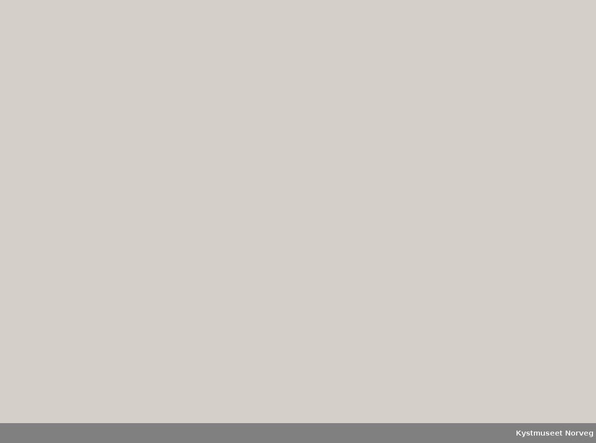 Bakerste rekke fra venstre: ukjent, ukjent, Edvard Johansen, Einar Nakling, Fridtjof Løvset, John B. Sørå. Andre rekke fra venstre: ukjent, ukjent, Agnes Nakling Torstad, Sigrid Hiller, Sidevard Hamland, Petter J. Sørå, Jørgen Mulstad og Ole Pettersen ellers ukjente. Kretstevne på Kolvereid