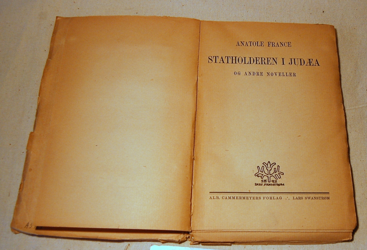 På bokens forside et bilde av en nesten naken kvinne som danser med armene over hodet