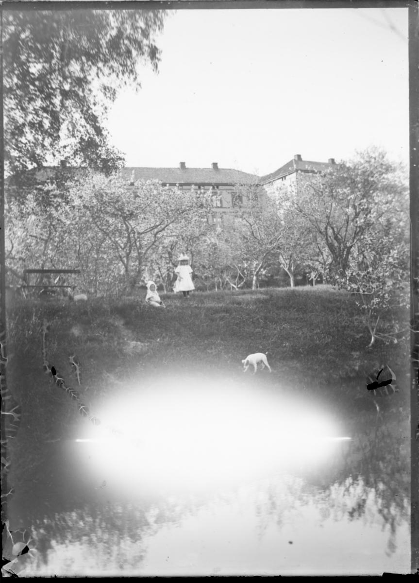 To barn i hagen på Linderud Gård, med en hund.