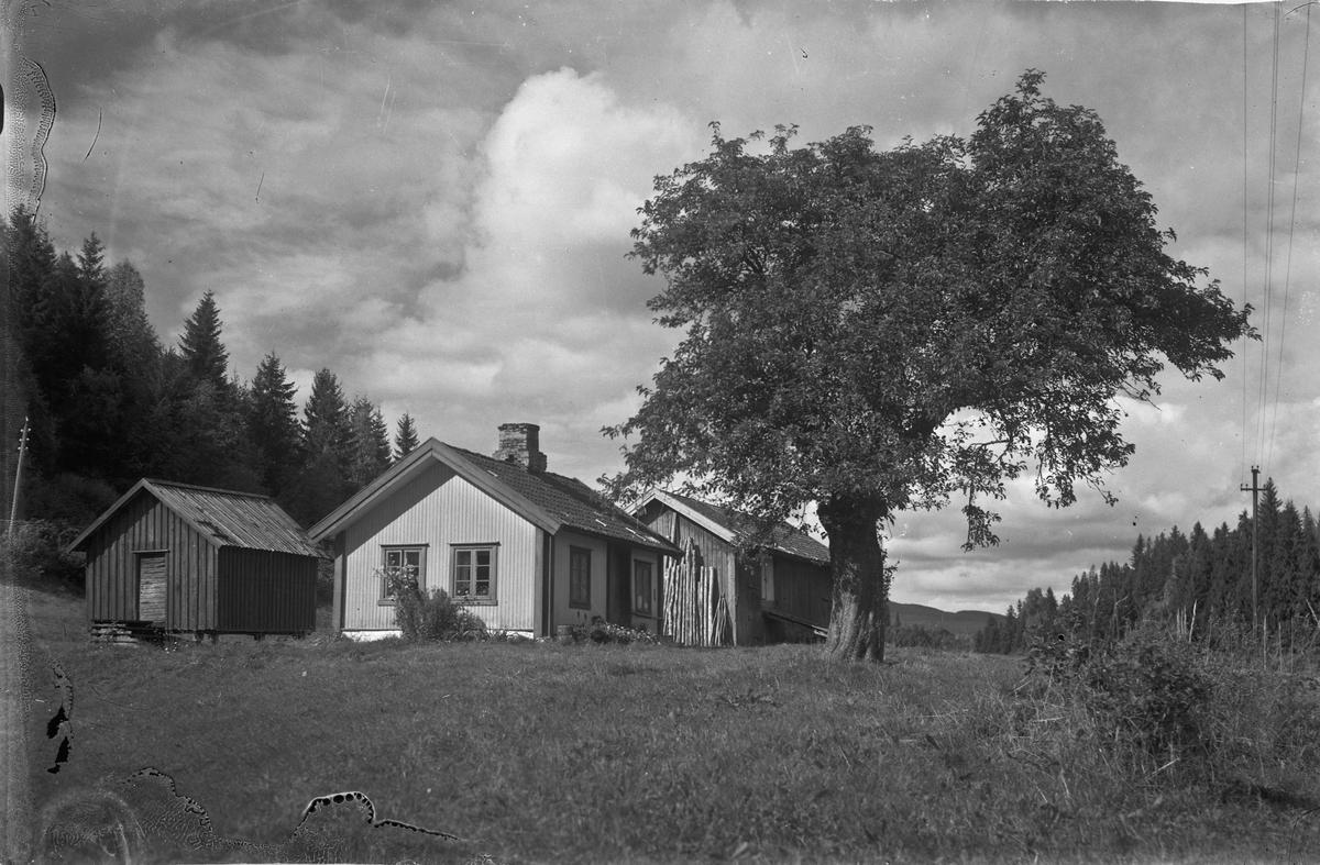 "Husmannsplassen Bårlidalstangen (""Tangen"")"