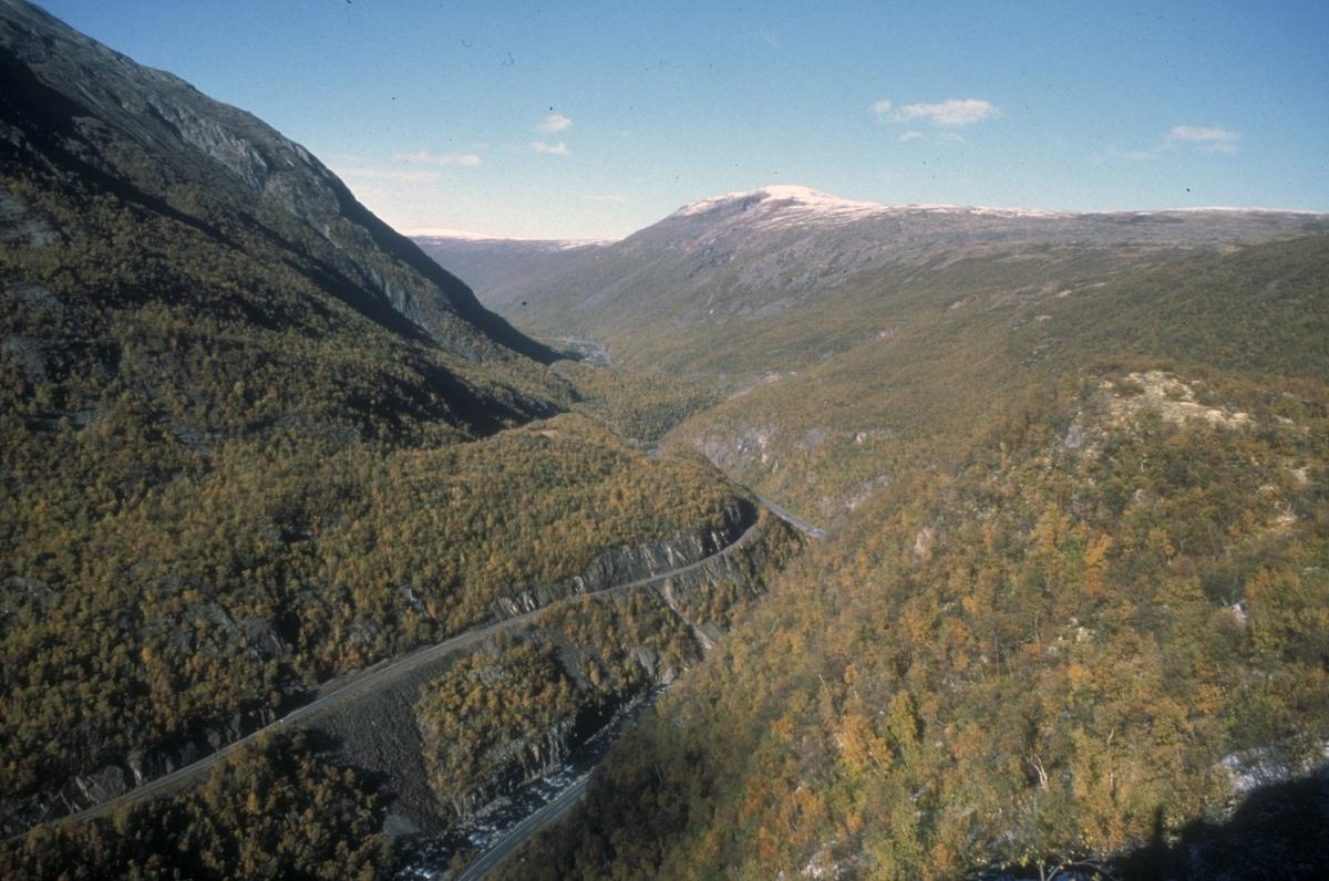 Drivdalen sett fra Tingsvaet langs Vårstigen